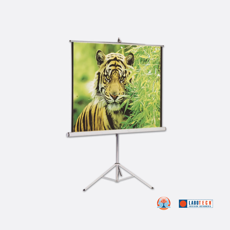 BDI-113-Projection-Screen-(with-Metallic-Stand)